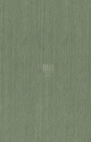 480 - KOTO GREEN