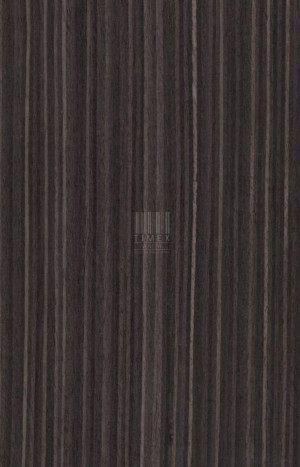 822 - BLACK ZIRICOTE