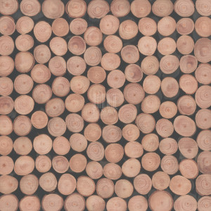 TM-913 | Size: 300 x 300 mm - Thick. 6 mm