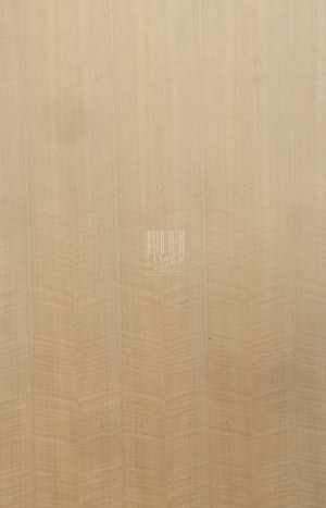 FIGURE WHITE OAK