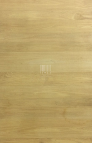 GOLDEN TEAK (HRZ)